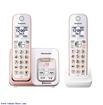 تلفن بي سيم پاناسونيک مدل KX-TGD562